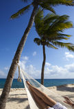 Female legs in a hammock on background of ocean and sky Royalty Free Stock Images