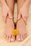 Female legs and hands Stock Images