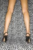 Female legs in heels. Back view of Caucasian female legs wearing high heels on leopard print background stock image
