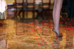 Female legs in high heels Stock Images