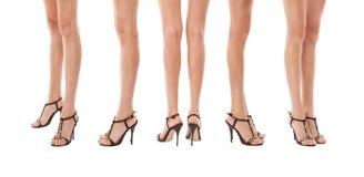 Female legs Royalty Free Stock Image
