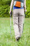 Female legs and nordic walking poles Royalty Free Stock Photography