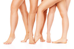 Female legs. A picture of female legs over white background Royalty Free Stock Photography