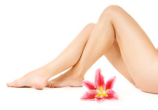 Female legs with pink lily Stock Photography