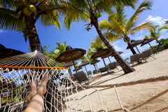 Female legs relaxing on hammock on tropical beach with palm leaf thatch roofing  umbrellas and palm trees in the background Stock Image