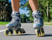 Female legs in roller blades Royalty Free Stock Images