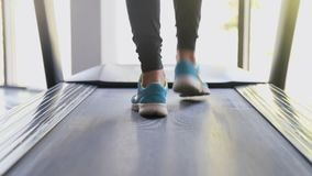 Female legs running on treadmill in gym. Young woman exercising during cardio workout. Feet of girls in sport shoes. Training indoor at sport club stock footage