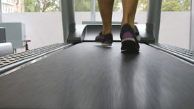 Female legs running on treadmill in gym. Young woman exercising during cardio workout. Feet of girls in sport shoes. Training indoor at sport club. Close up stock video
