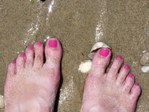 Female legs in the sand beach. Female legs with pink pedicure in the sand beach Royalty Free Stock Photos