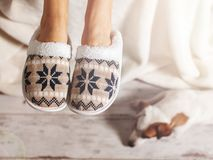 Female legs in slippers Royalty Free Stock Image