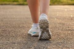 Female Legs Sneaker Stock Images