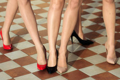 Female legs in stylish shoes Stock Image