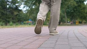 Female legs walking park path, health improvement, everyday training, vitality