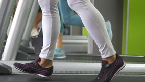 Female legs walking and running on treadmill in gym. Young woman exercising during cardio workout. Feet of girls in Stock Image