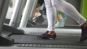 Female legs walking and running on treadmill in gym. Young woman exercising during cardio workout. Feet of girls in stock video