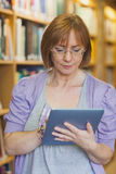 Female librarian using concentrated her tablet Royalty Free Stock Photo