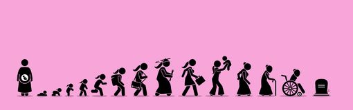 Female Life Cycle And Aging Process. Stock Images