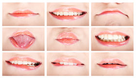 Female lips Stock Image