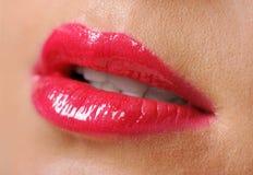 Female lips Stock Photos