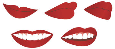 Female lips Royalty Free Stock Photos
