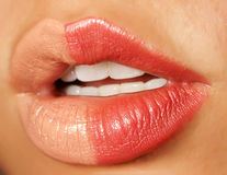 Female lips Stock Photography