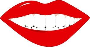 Female lips Royalty Free Stock Photography