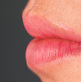 Female lips Stock Images