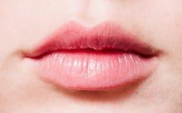 Female lips Royalty Free Stock Photos