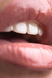 Female lips. Royalty Free Stock Image