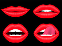 Female lips collection Stock Images