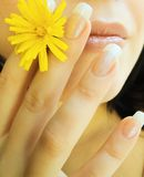 Female lips and flower Royalty Free Stock Image