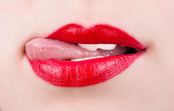 Female lips Royalty Free Stock Photo