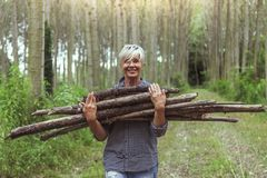 Female lumberjack carrying a stack of trunks Royalty Free Stock Image