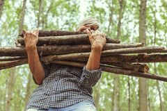 Female lumberjack carrying a stack of trunks Royalty Free Stock Images