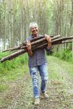 Female lumberjack carrying a stack of trunks Stock Image