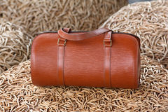 Female luxury personal fashion bag Royalty Free Stock Images