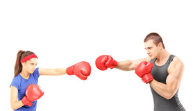 Female and male boxers with boxing gloves during a match Stock Photos