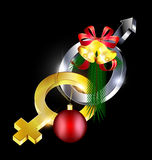 Female-male with Christmas Stock Images
