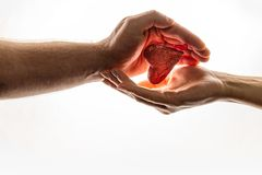 Female and male hands are keeping red heart together. Heart is between hands. World Compassion Day.