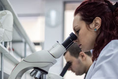 Female and male medical or scientific researchers or women and m Royalty Free Stock Photo
