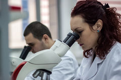 Female and male medical or scientific researchers or women and m Royalty Free Stock Image