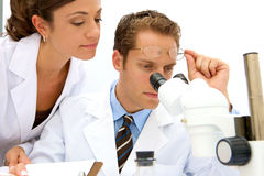 Female and Male Scientists Royalty Free Stock Photography
