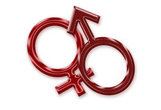 Female and male symbols. Computer generated feminine and male symbols over white background Stock Image