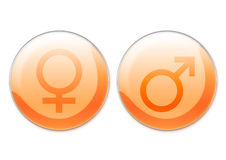 Female and male symbols vector illustration