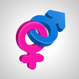 Female and male symbols. Pink female symbol and blue male symbol are connected together. Heterosexual couple concept Royalty Free Stock Photo