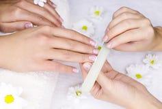 Female manicure Stock Photography