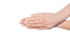 Female Manicure, women's hands on a white background Royalty Free Stock Image