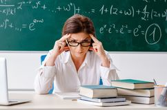 The female math teacher in front of the chalkboard. Female math teacher in front of the chalkboard stock photos