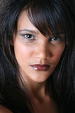 Female Model Royalty Free Stock Image