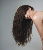 Female model with beautiful long hair. Looking at camera. Brunette woman on grey background Royalty Free Stock Photo